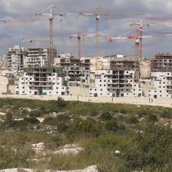 yefai-nof-project-progress